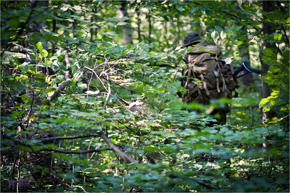 Боевое прочесывание леса и тактика действий в лесу малыми группами