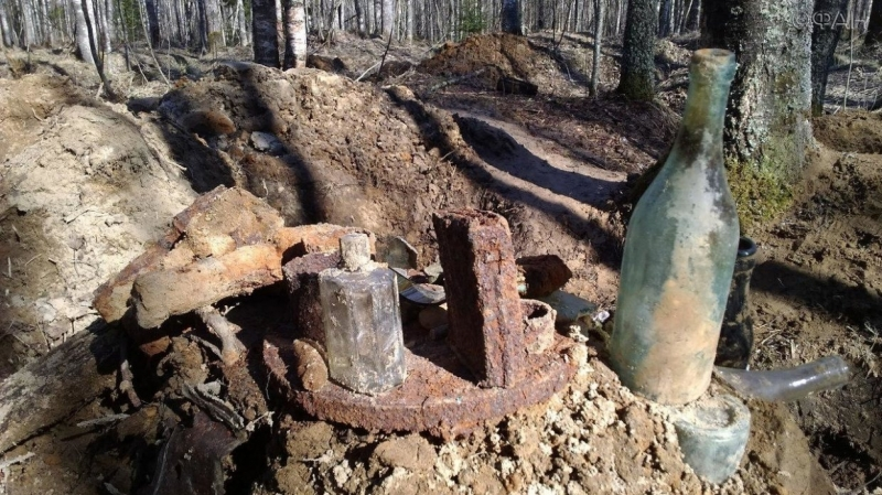 The remains of the fallen soldiers of the Leningrad Belarusian discovered near St. Petersburg